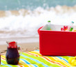30_BeachPicnic